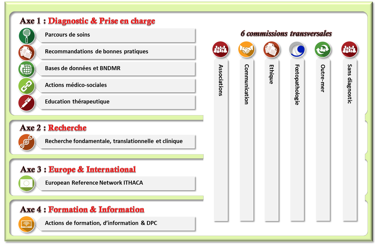 AxeS et commissions transversales AnDDI-Rares