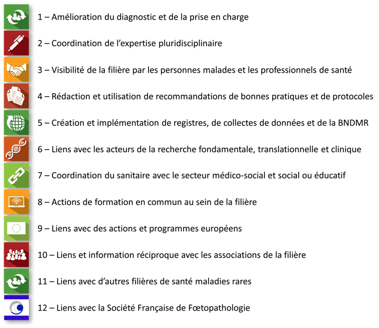 Groupes d'expertise AnDDI-Rares